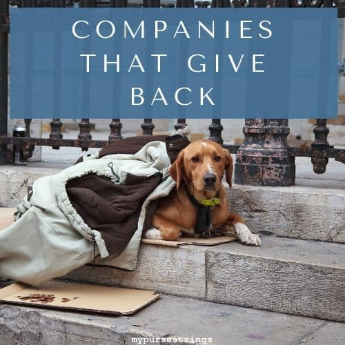 homeless dog companies that give back
